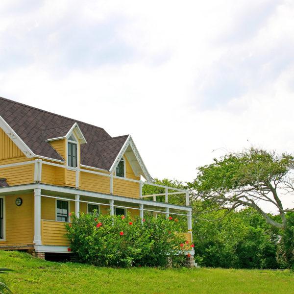 Комфорт сальса финик на крыше дома